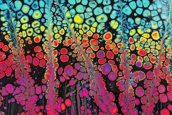 Becz Dorottya: Művészet