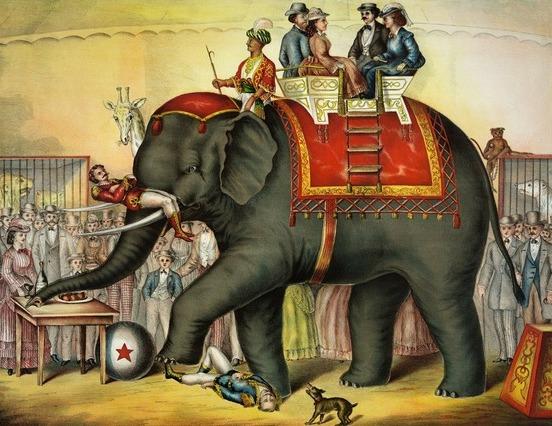 Szijj Ferenc: Az elefánt